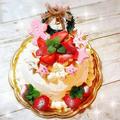 リクエストは「苺がいっぱい♡」 ~苺のショートケーキ♡~