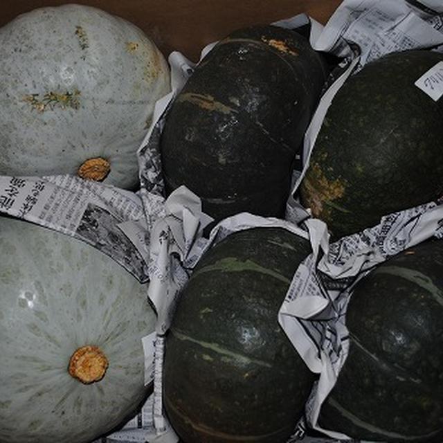 かぼちゃ(白い九重栗)を使って、シンプルかぼちゃの煮物