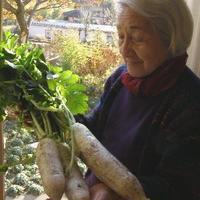 大根とおばあちゃん