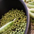【レシピ】グリンピースとオリーブオイルのベースでカナッペ