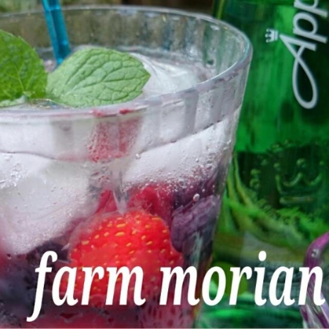 農園夏バテ対策と夏休み