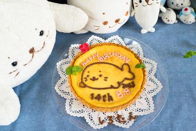 しろたん14回目のお誕生日チーズケーキタルト