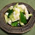 イカときゅうりのねぎ塩和え。デパ地下のデリのお惣菜をおうちで簡単に再現。