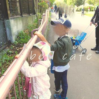 久々に家族4人で円山動物園