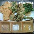 彩塩☆春野菜の天ぷら