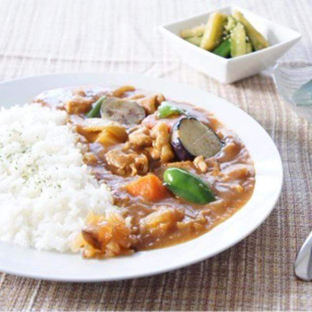 日本のカレー Japanese Curry