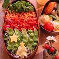 クリスマス弁当*のっけ弁