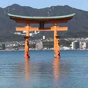 食べ歩きin広島【ジューシーすぎてびっくり!はっさく大福】