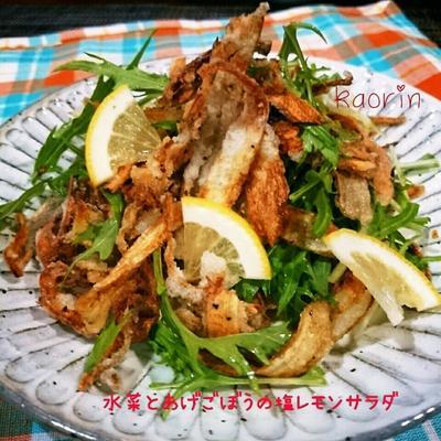 めっちゃ美味しい‼水菜と揚げごぼうの塩レモンサラダ❤