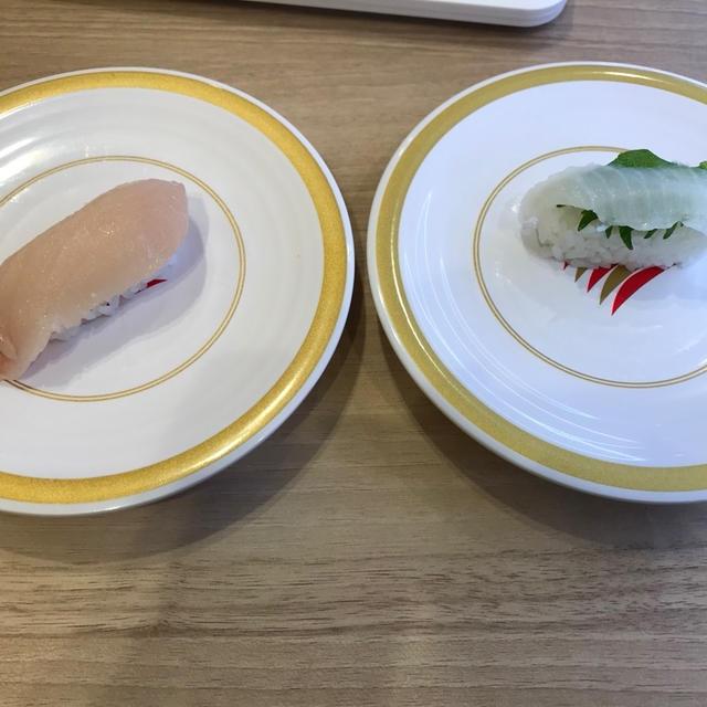 今日のご飯はカッパ寿司