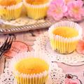 ベリー&チョコスフレチーズケーキ☆焼きそばピクニック~!!