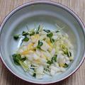 長芋とかいわれ菜の生からすみ和え、ヨコワの刺身