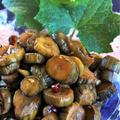 ■菜園発【採れ立て大量胡瓜で パリパリな胡瓜のキューちゃん作り】ちょっと手間暇はかかりますが><! by あきさん