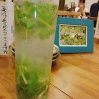 経堂・パクチーハウス東京