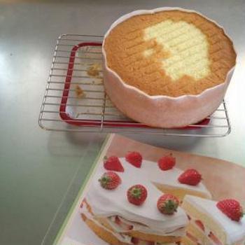 ショートケーキのスポンジ