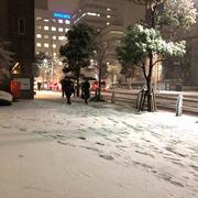 関東は4年ぶりの大雪!北国からみたら小雪なんだけどね~^^