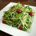 【動画レシピ】水菜と胡瓜のツナサラダ♪ by bvividさん
