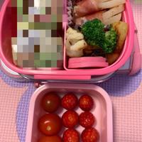 幼稚園生のお手軽お弁当 & キュキュットCLEAR 泡スプレー