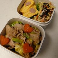 お弁当(豚肉&新キャベツの生姜炒め)