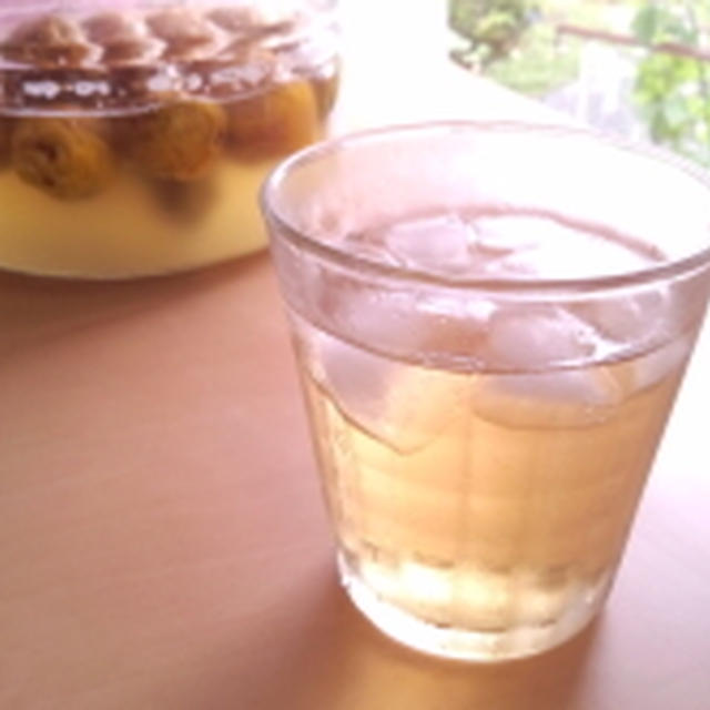 梅シロップ&梅の使い道(梅ジュース・お菓子作り・料理・酵母起こし・醤油漬け・梅酒風)