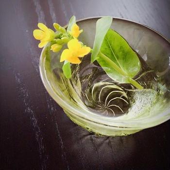 小松菜に咲いてた小さくて大きな命❤️
