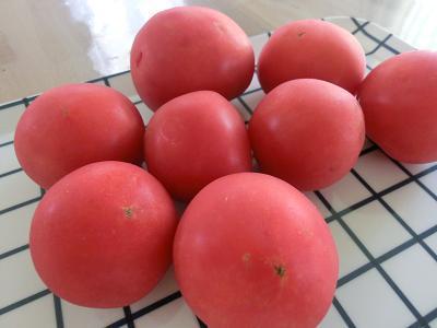 完熟トマトのハヤシライス
