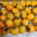 干し柿作りました!!友人からの贈り物