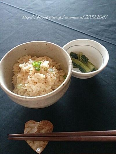 《レシピ》生姜ご飯♪ と、本日のわんこ。