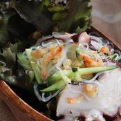 タイ風タコの春雨サラダ