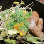 チャーゾー(揚げ春巻)のエスニック丼