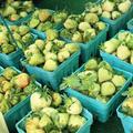 緑の苺は料理やピクルスに♪
