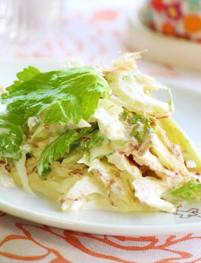 新玉ねぎとセロリのサラダ