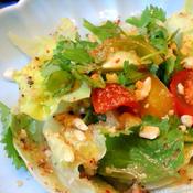 ピリ辛ドレッシングの中華風サラダ
