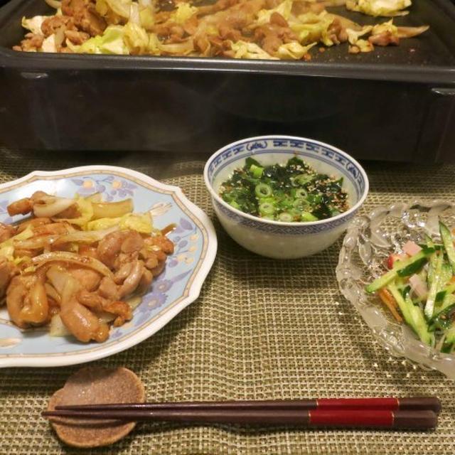 岐阜名物『けいちゃん』の晩ご飯 と 『沼さん』♪