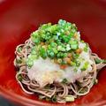 塩サバと菊花の副菜