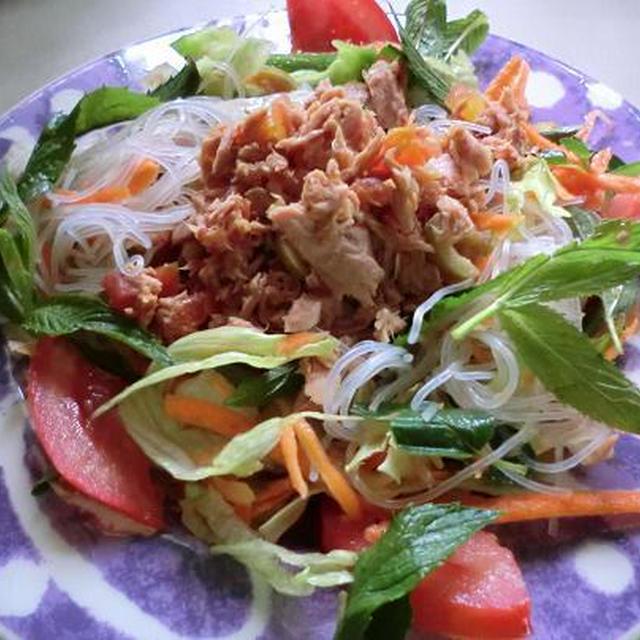 正月太り解消 野菜たっぷりツナと春雨のおかずサラダ