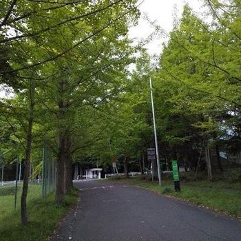 安平スタンプラリー&由仁の続き!126km!