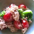 ブロッコリーとプチトマトのツナ和えサラダ