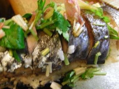 #370 〆さばの寿司