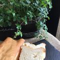 グルテンフリー米粉100%・卵不使用・無塩バターを使わずに製菓用太白胡麻油でアレルギー対応食パン
