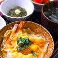 糖質制限! 豆腐ご飯で海老フライ丼(鎌倉丼)風 & 実はコレ・・甘いのです!