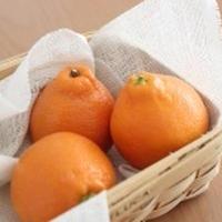 オレンジとトマトのマリネ