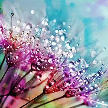 『虹のとびら☆光の世界へ』サイトのタイトルの意味