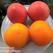 黄色いトマト * 夏野菜の頂き物