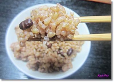 酵素玄米生活を始めるための保温ジャー、厳選3選の実力はいかに