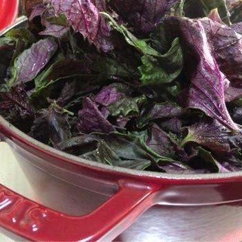 ストウブでレモン風味の赤紫蘇ジュース。