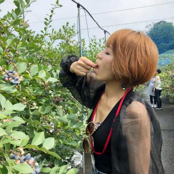 農業体験民泊 at 三重県白山町