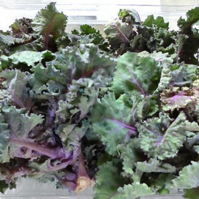 オーストラリアで見つけた変わった野菜 ケーレッツ