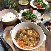 栄養満点!豆腐とニラの食べるスープ♪…二人にあわせてあるものから作った献立