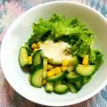 胡瓜とコーンのジンジャーマヨ醤油サラダ